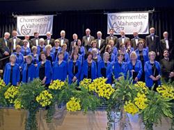 Chorensemble Vaihingen e.V.